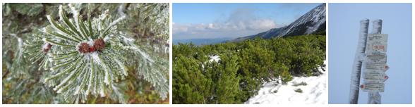 wintergruss.png